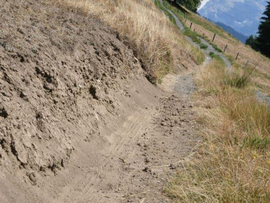 4_Damaged_grass_on_hillside-2