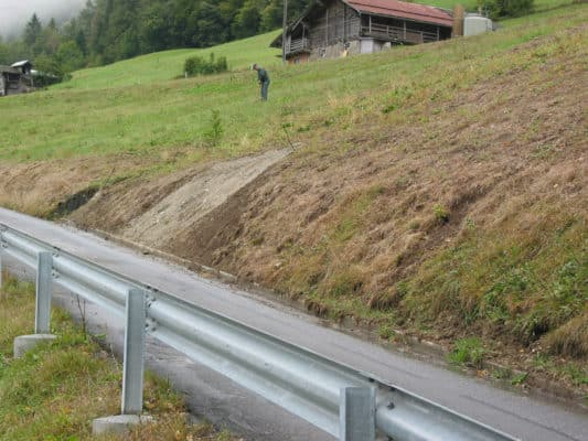 Damaged grass on roadside - 2