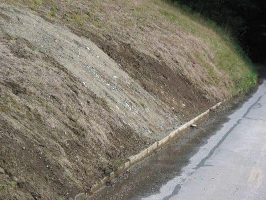 Damaged grass on roadside - 3